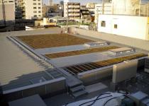 施工事例 折板屋根 商用施設D 屋上緑化
