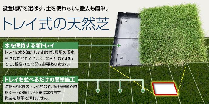 設置場所を選ばず、土を使わない。撤去も簡単。トレイ式の天然芝