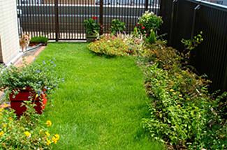 施工事例 平屋根 個人宅 ベランダ緑化