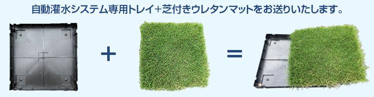 自動灌水システム専用トレイ+芝付きウレタンマットをお送りいたします。